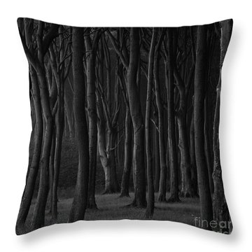 Black Forest Throw Pillow by Heiko Koehrer-Wagner