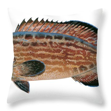 Black Grouper Throw Pillow by Carey Chen