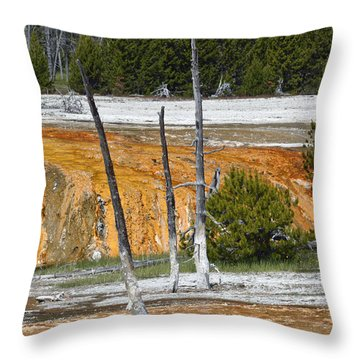 Black Sand Basin Therma Runoff Yellowstone Throw Pillow by Bruce Gourley
