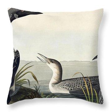 Black Throated Diver  Throw Pillow by John James Audubon