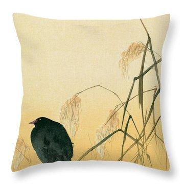 Blackbird Throw Pillow by Japanese School