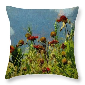 Blanketing The Sky Throw Pillow by Jeff Kolker