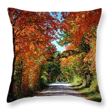 Blaze Of Glory Throw Pillow by Cricket Hackmann