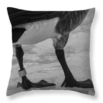 Bling Throw Pillow by Thomas Young