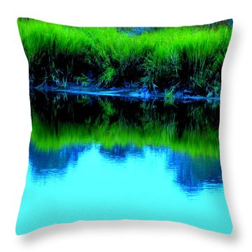 Blue Ashley Throw Pillow by Randall Weidner