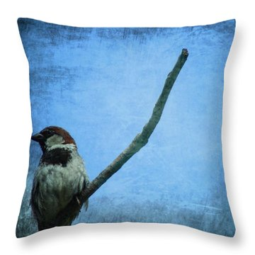Sparrow On Blue Throw Pillow by Dan Sproul