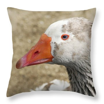 Blue-eyed Goose Throw Pillow by Bob and Jan Shriner