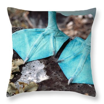 Blue-footed Booby Feet Throw Pillow by Ron Sanford