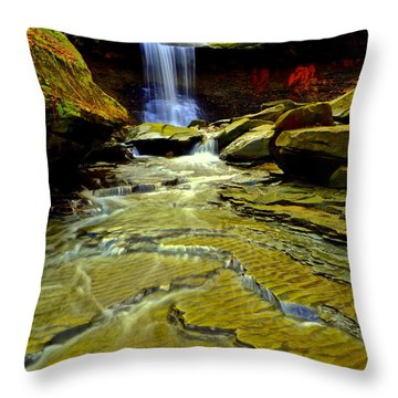 Blue Hen Falls Throw Pillow by Frozen in Time Fine Art Photography
