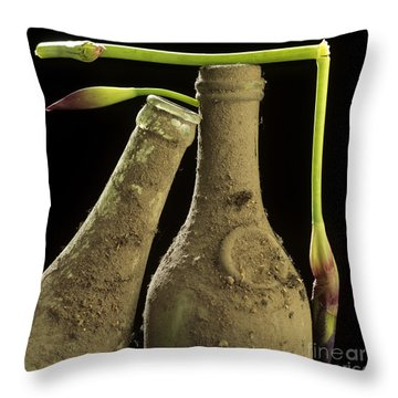 Blue Iris And Old Bottles Throw Pillow by Bernard Jaubert