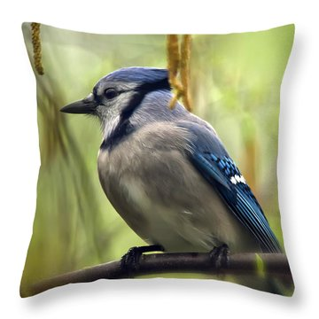 Blue Jay On A Misty Spring Day Throw Pillow by Lois Bryan