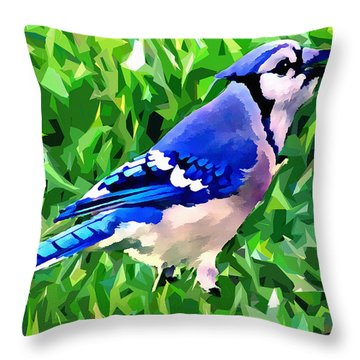 Blue Jay Throw Pillow by Stephen Younts