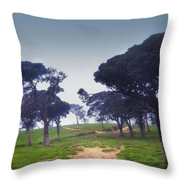 Blue Mist Silence. Sri Lanka Throw Pillow by Jenny Rainbow