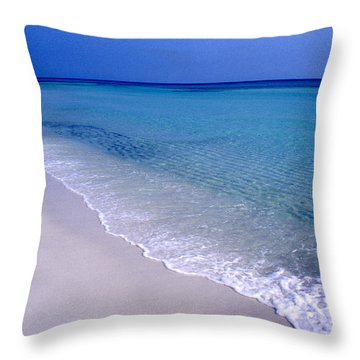 Blue Mountain Beach Throw Pillow by Thomas R Fletcher