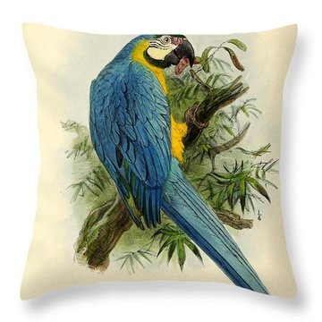 Blue Parrot Throw Pillow by J G Keulemans