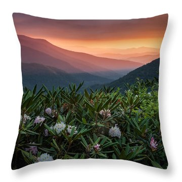 Blue Ridge Morn With Rose Bay Rhododendron  Throw Pillow by Rob Travis