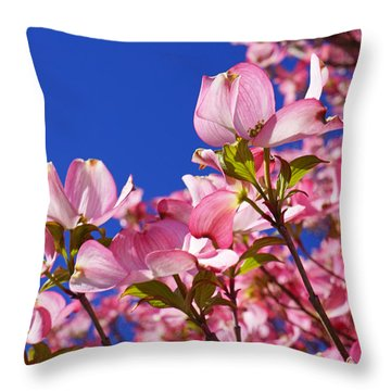 Blue Sky Art Prints Pink Dogwood Flowers Throw Pillow by Baslee Troutman