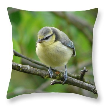 Blue Tit In A Cherry Tree Throw Pillow by Valerie Ornstein
