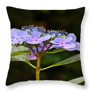 Blue Wave Lacecap And Guest Throw Pillow by Byron Varvarigos