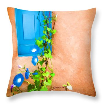 Blue Window - Painted Throw Pillow by Bob and Nancy Kendrick