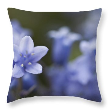 Bluebells 3 Throw Pillow by Steve Purnell