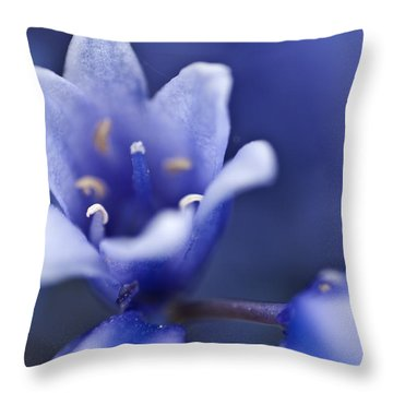 Bluebells 6 Throw Pillow by Steve Purnell