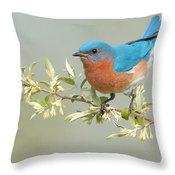 Bluebird Floral Throw Pillow by William Jobes