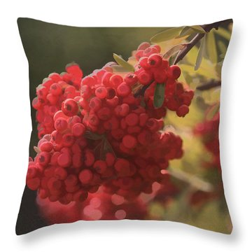 Blushing Berries Throw Pillow by Kandy Hurley