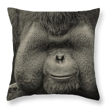 Bornean Orangutan II Throw Pillow by Lourry Legarde