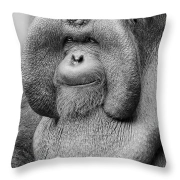 Bornean Orangutan IIi Throw Pillow by Lourry Legarde