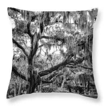 Bosque Bello Oak Throw Pillow by Dawna  Moore Photography