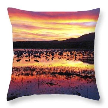 Bosque Del Apache Throw Pillow by Steven Ralser