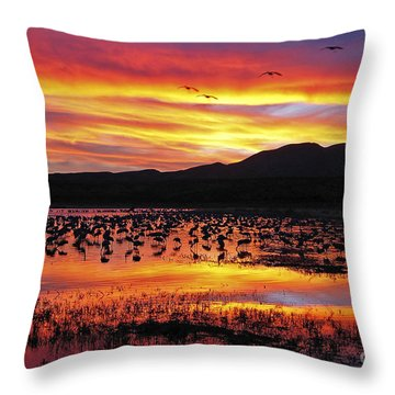 Bosque Sunset II Throw Pillow by Steven Ralser