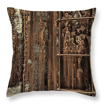 Boxcar's Ladder   Throw Pillow by Marcia Colelli
