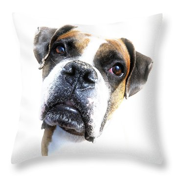 Boxer Expression Throw Pillow by Susan Leggett