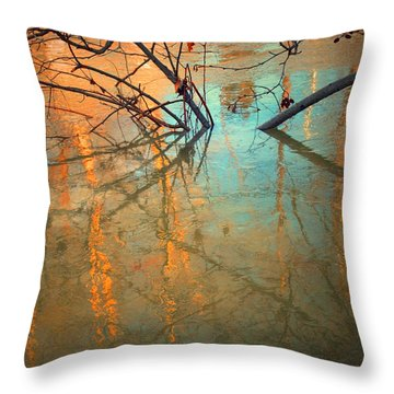 Branches And Ice Throw Pillow by Tara Turner