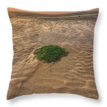 Breeze Of Dawn Throw Pillow by Evelina Kremsdorf