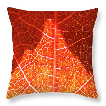 Bright And Dark Throw Pillow by Heiko Koehrer-Wagner