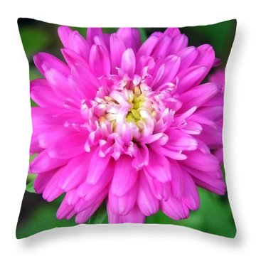 Bright Pink Zinnia Flowers Throw Pillow by Christina Rollo