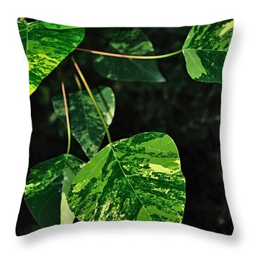 Bright Variegated Leaves Throw Pillow by Kaye Menner