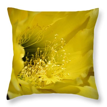 Brilliance Throw Pillow by Deb Halloran