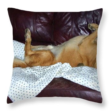 Bronson And His Ball Throw Pillow by Mary Deal