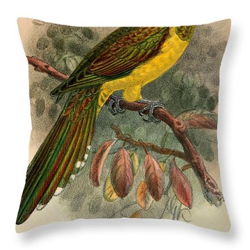 Bronze Cuckoo Throw Pillow by J G Keulemans
