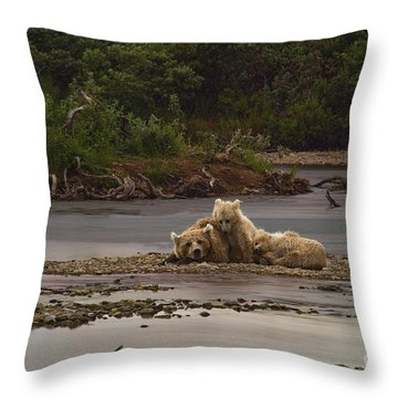 Brown Bear And Cubs Taking A Break From Fishing For Salmon Throw Pillow by Dan Friend
