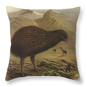 Brown Kiwi Throw Pillow by J G Keulemans