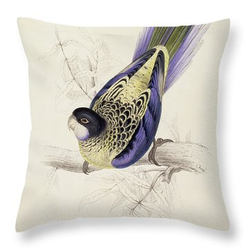 Browns Parakeet Throw Pillow by Edward Lear