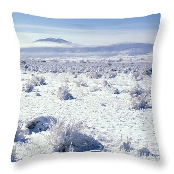 Brrrr 1021 Throw Pillow by Brent L Ander
