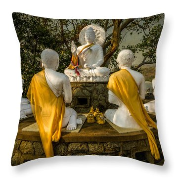 Buddha Lessons Throw Pillow by Adrian Evans