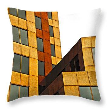 Building Blocks Throw Pillow by Karol Livote