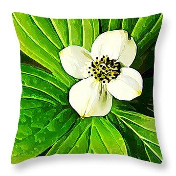 Bunchberry Blossom Throw Pillow by Bill Caldwell -        ABeautifulSky Photography